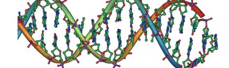 Reducing Human Genes