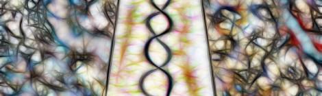 De Steal: When Art Ownership Meets DNA