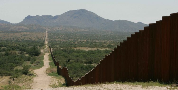 Immigration Law and Reform: Looking at State and Federal Precedent