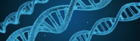 Protect Your DNA: Unraveling of Privacy in Genetic Testing