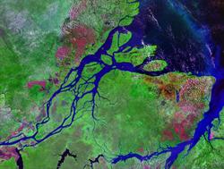 amazon river plume