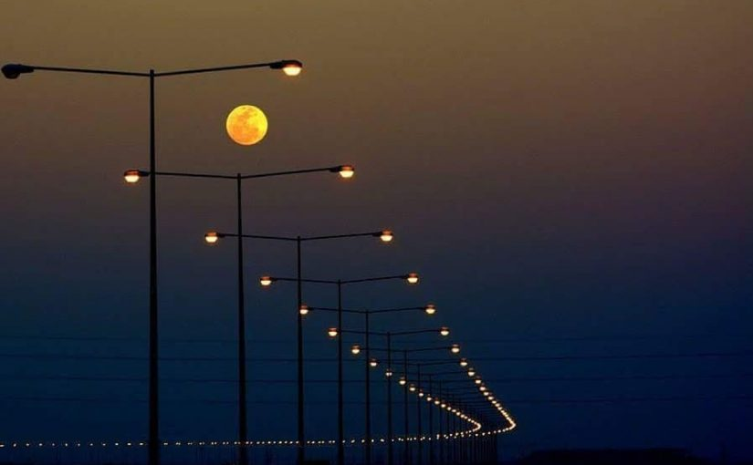 Greg Blotnick - Lights