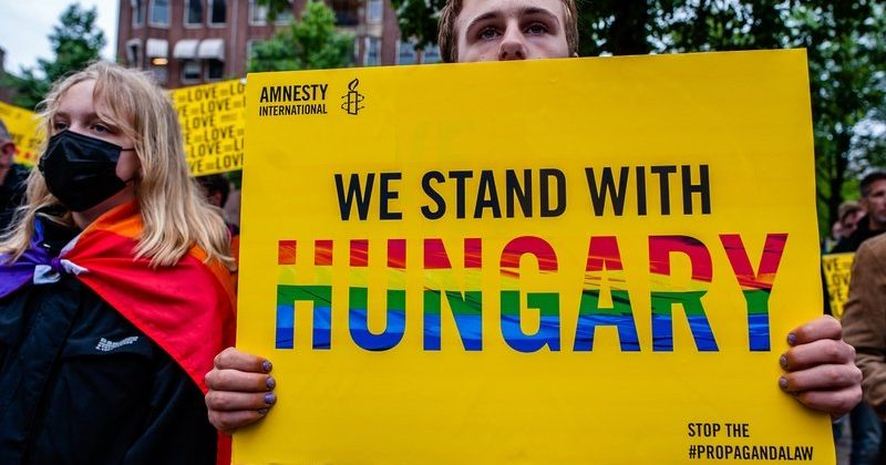 Hungarian Curtailment of LGBTQ Rights: A Critical Analysis