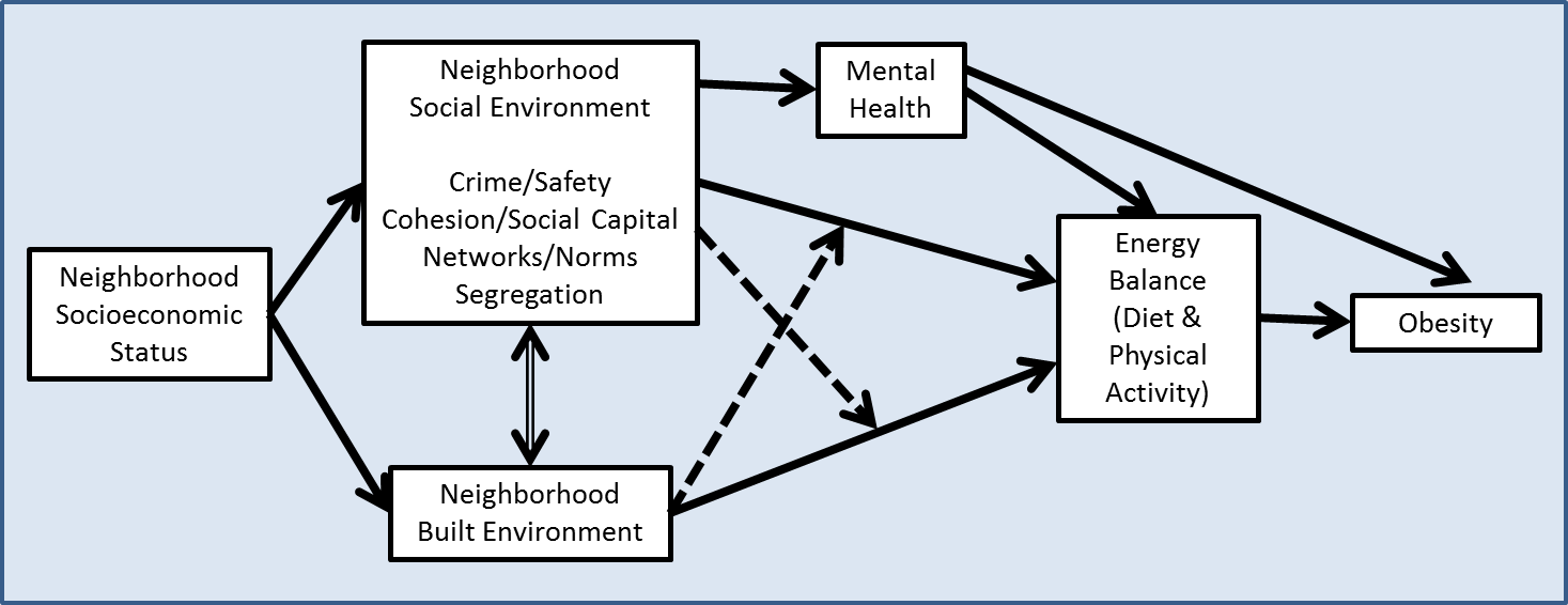 explain the relationship between obesity social class and neighborhood