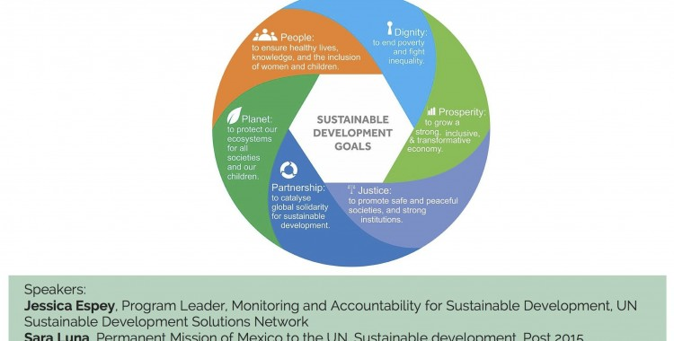 Sustainable Development Goals - Towards the Future We Want?